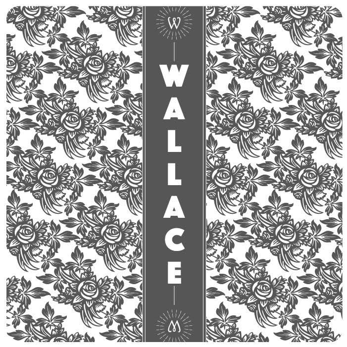 Wallace - nouveau projet d'Erwan confondateur des hurlements de Léo