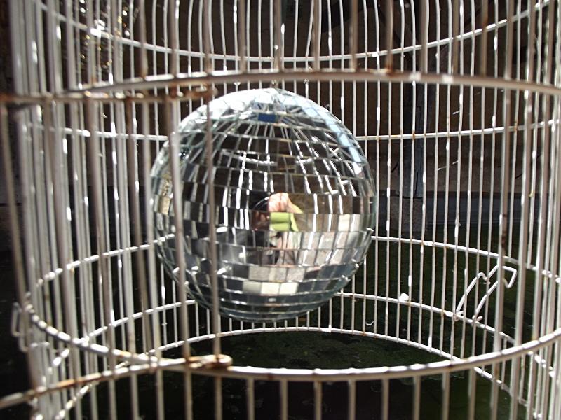 cage_boule