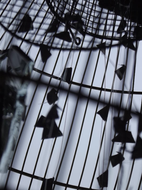 cage silhouette