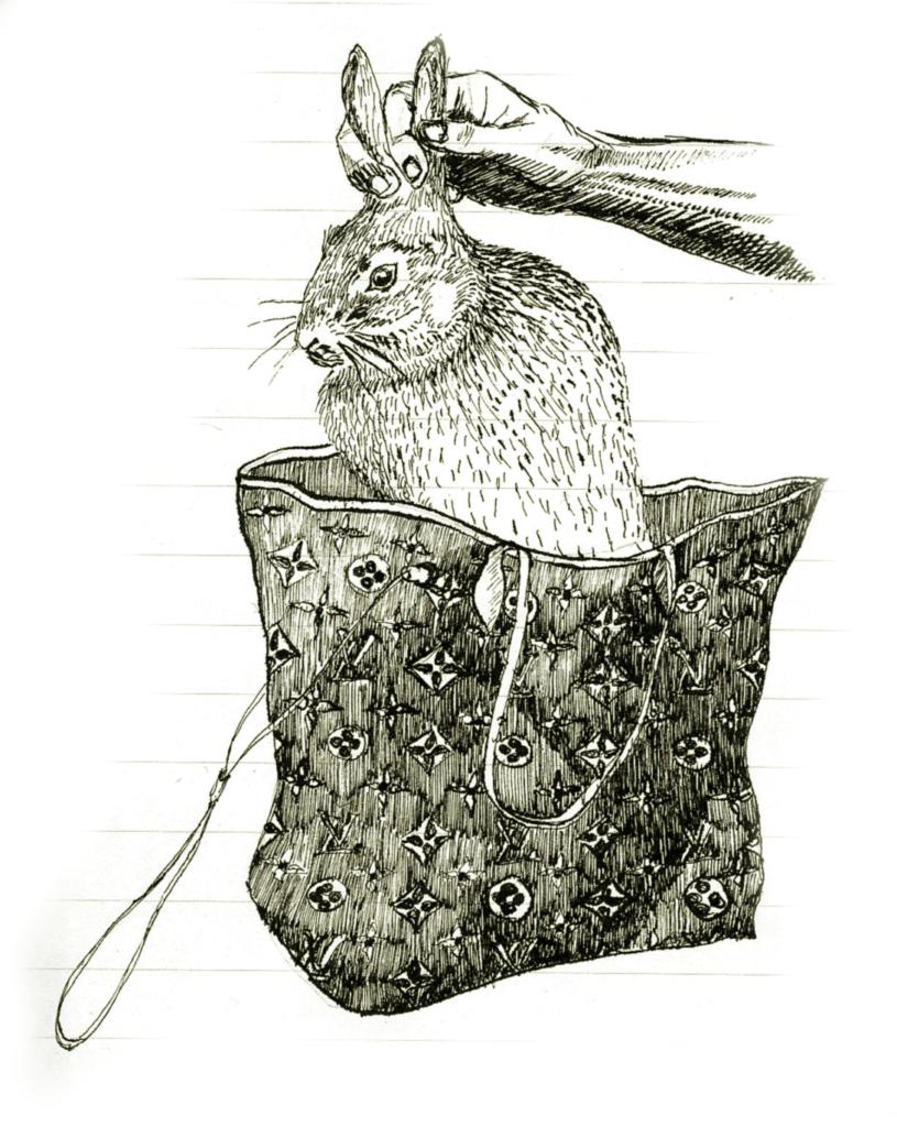 Lapin sortant d'une sacoche Vuitton
