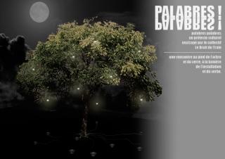 palabres-palabres-arbre-feuillu